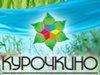 КУРОЧКИНО, база отдыха Челябинск